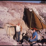 Priday Plume dig, Madras, Oregon