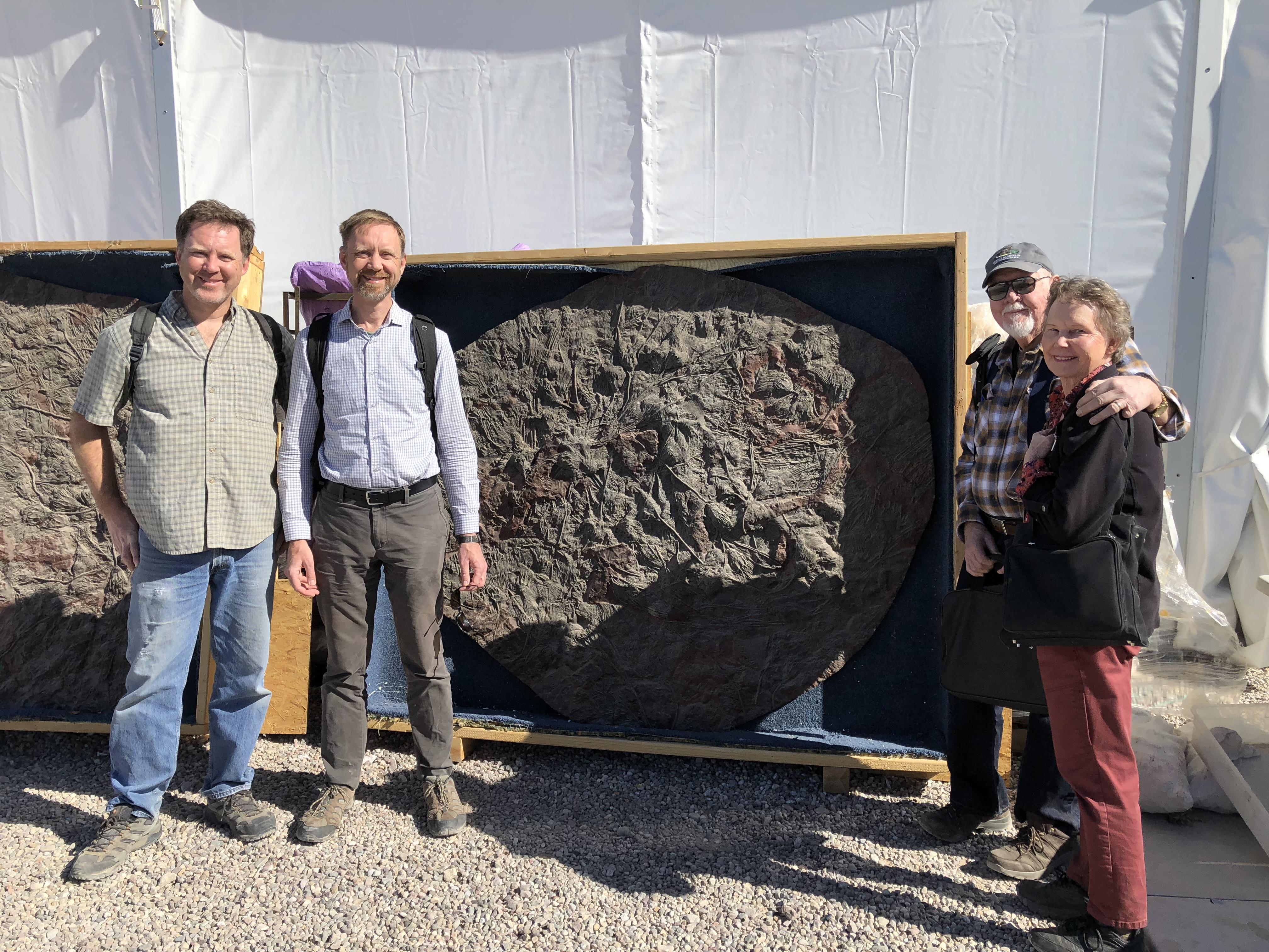 Big fossil