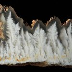 Stinking Water Plume Agate