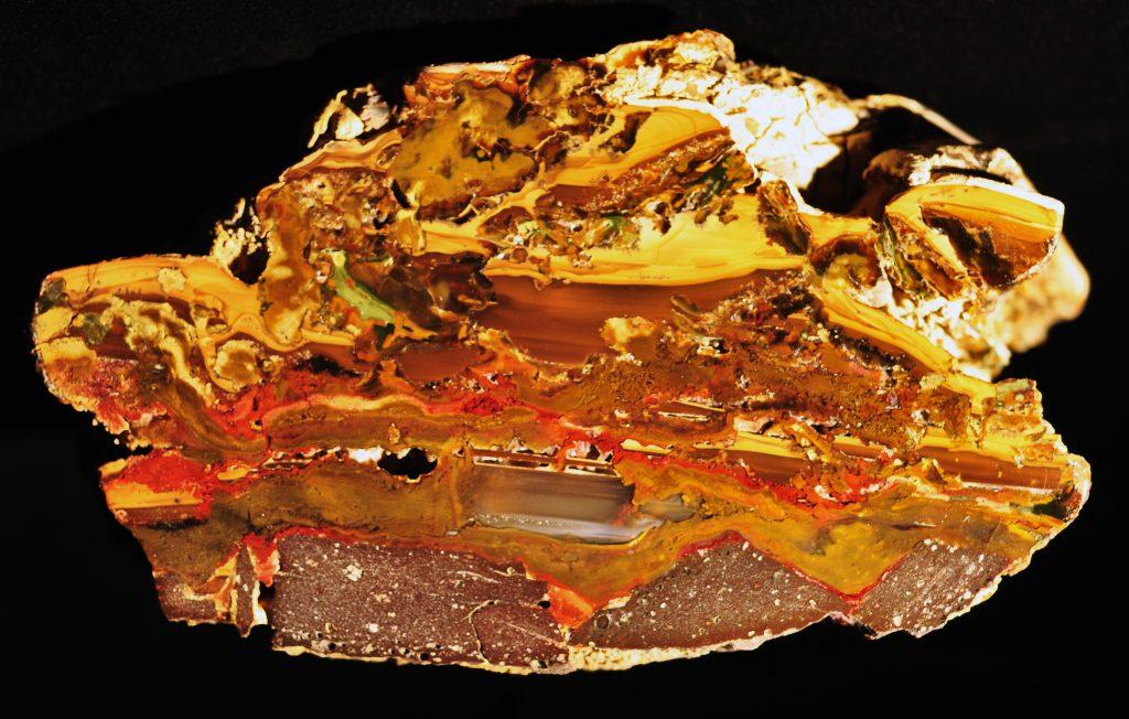 Polished nodule of Rim Jasper mined near Ochoco Lake, Oregon