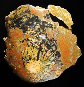 Priday Queen Plume agate thunderegg