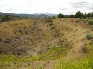 Priday Plume beds, Madras, Oregon