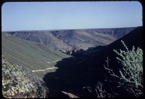 Bruneau Canyon, Owyhee County, Idaho, USA