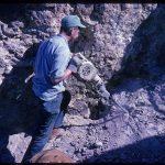 Bruneau jasper mine, Bruneau Canyon, Owyhee County, Idaho, USA