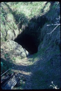 Bill's great-grandfather, John O. Gaumer, dug the incline tunnel through the mountain, to meet up with the main mine shaft.